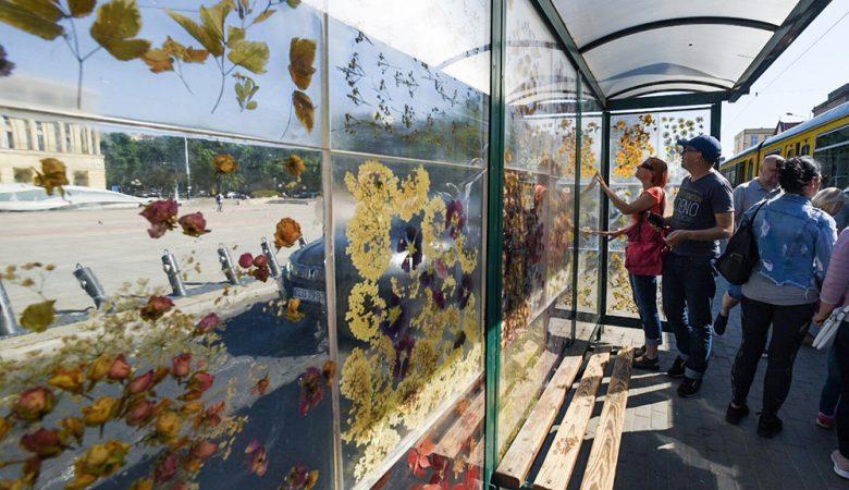 Dominika Cebula'nın kurutulmuş çiçeklerle kaplı otobüs durağı projesi